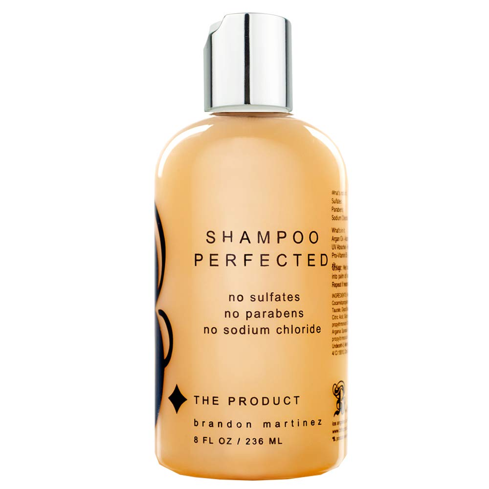 Sulfate Free Shampoo Made With French Argan Oil-Sodium Chloride Free, Moisturizing Shampoo With Pro-Vitamin B-B. The Product Shampoo Perfected B THE PRODUCT (8.5oz)