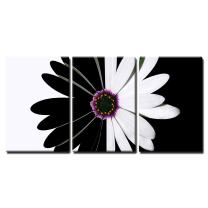 "wall26 - 3 Piece Canvas Wall Art - Flower Black and White - Modern Home Decor Stretched and Framed Ready to Hang - 24""x36""x3 Panels"