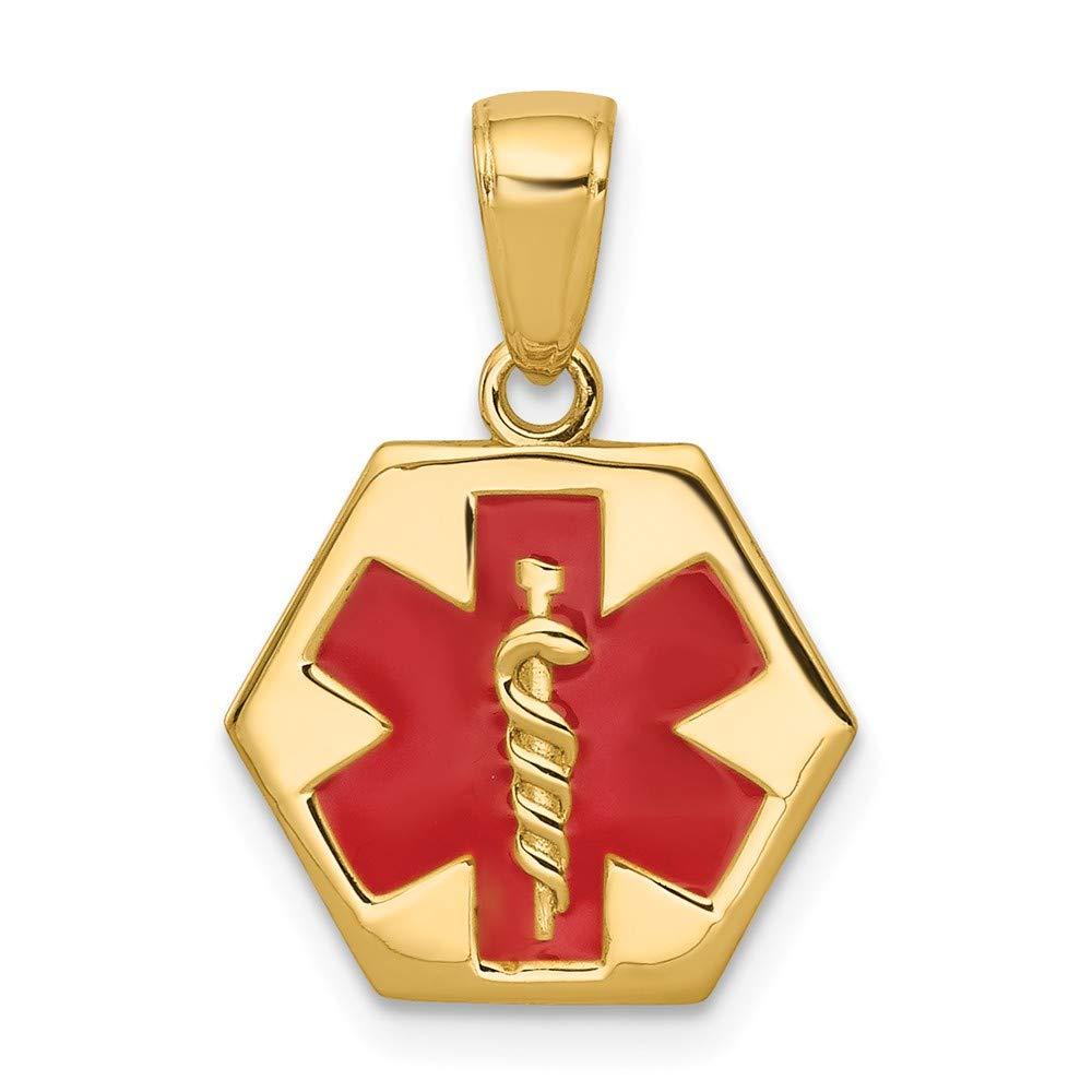 14k Yellow Gold Enameled Medical Alert Disk Pendant Charm Necklace Fine Jewelry For Women Gifts For Her