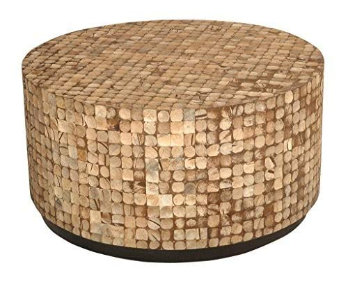 EAST at MAIN Cummings Coconut Shell Inlay Round Coffee Table, Brown, (31x31x16)