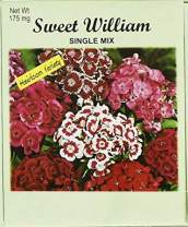 Set of 50 Flower Seed Packets! Flower Seeds in Bulk (50, Sweet William)