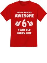 This is What an Awesome 6 Year Old Looks Like Birthday Youth Kids T-Shirt