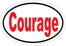 WickedGoodz Oval Courage Vinyl Decal - Inspirational Bumper Sticker - Perfect Student Gift