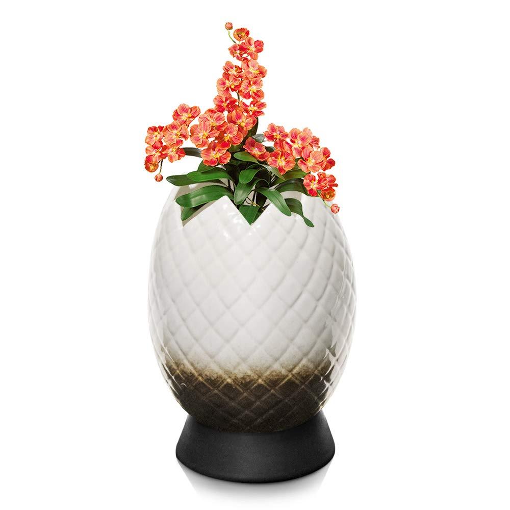 Succulent Pots Planter Flower Pot - Dragon Egg Style Plant Pot with Ceramic Saucer, Unique Planter for Home Office Decor and Unique Gift for Family Friends Colleague