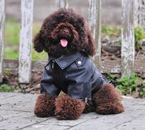 Lovelonglong Cool Dog Leather Jacket, Warm Coats Dogs Windproof Cold Weather Coats for Large Medium Small Dogs, Black Brown Red Colors