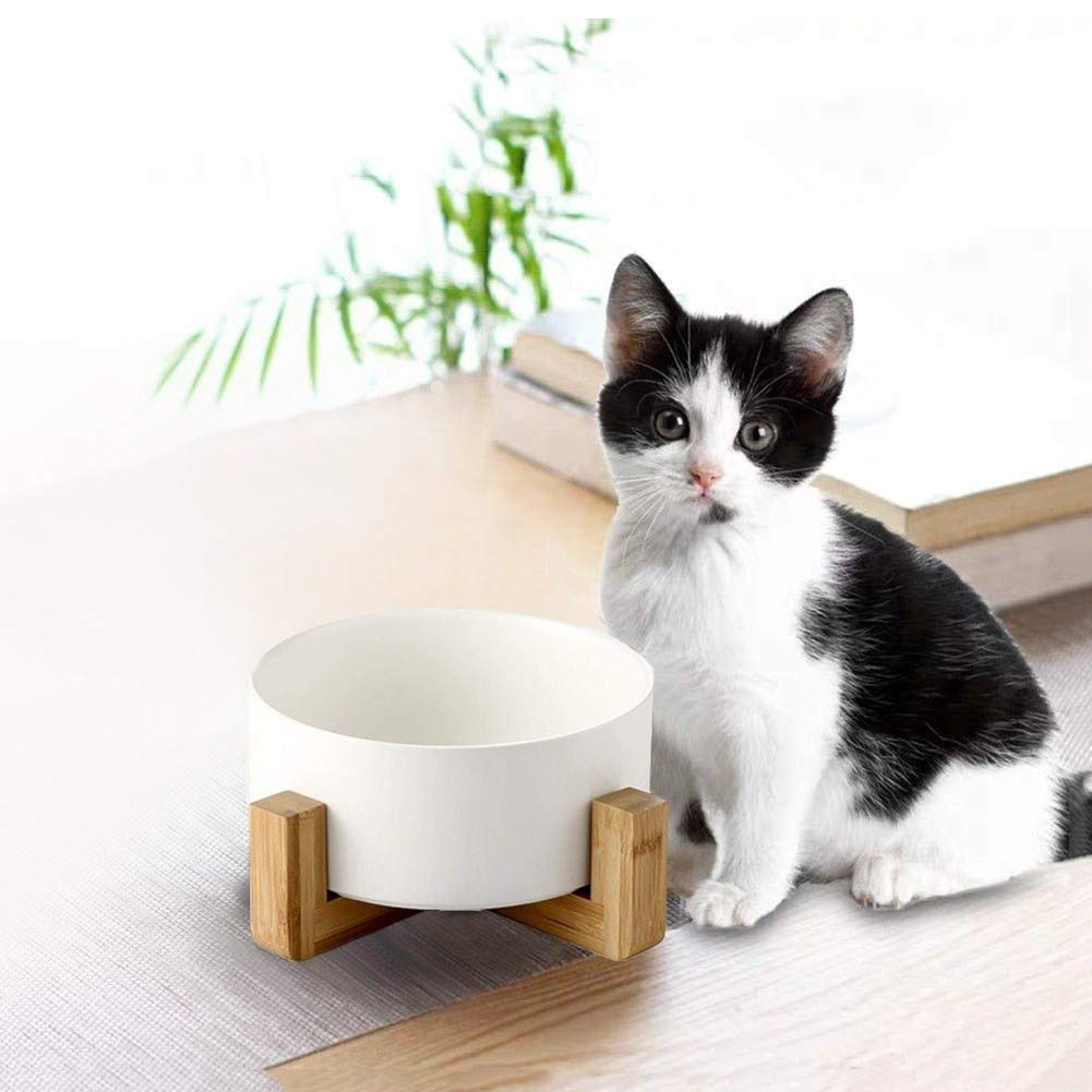 llkajes Ceramic Raised Pet Bowls Dog and Cat Water Food Basic Bowls with Anti-Slip Wooden Stand Reduce Neck Burden Easy to Clean Healthy Eating-White