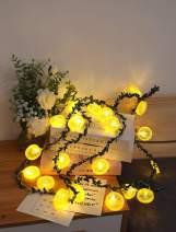 Fruit Lemon Slice String Lights LED Flashing String Battery Powered Indoor Outdoor Lighting Lamp for Wedding Home Birthday Garden Yard Patio Party Christmas Decorations (6.6ft/20 LED, Lemon slices-B)