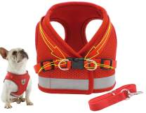Dog Harness Vest Set Step in Puppy Vest Harness Leash Soft Mesh No Choke for Large Medium Pets Red S