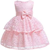 Toddler Baby Girls Lace Applique Christing Baptism Dress Infant Baby Pageant Birthday Party Dress 12 Colors