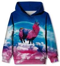 Funnycokid Teens Boys Girls Pullover Hoodies Funny 3D Print Hooded Sweatshirts for Kids 6-16Y