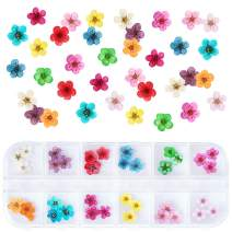 1 Box Dried Flowers for Nail Art, UNIME 12 Colors Dry Flowers Mini Real Natural Flowers Nail Art Supplies 3D Applique Nail Decoration Sticker for Tips Manicure Decor (Flowers)