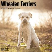 2020 Wheaten Terriers Wall Calendar by Bright Day, 16 Month 12 x 12 Inch, Cute Dogs Puppy Animals Wolfhound Canine