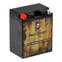 Pirate Battery YB14A-A2 lead_acid_battery