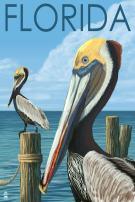 Florida - Brown Pelicans 29295 (12x18 SIGNED Print Master Art Print - Wall Decor Poster)