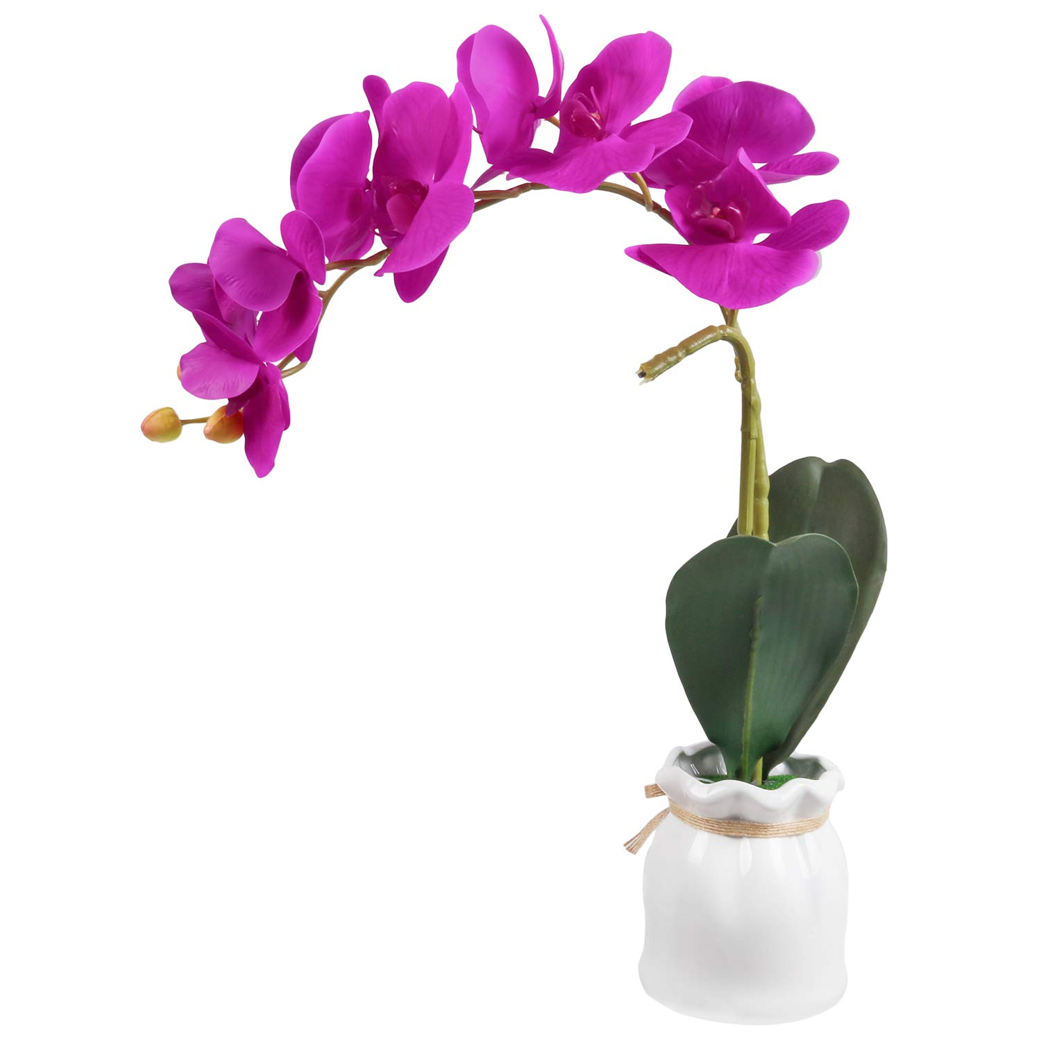 U'Artlines Artificial Phalaenopsis Bonsai Fake Flower Real Touch Butterfly Orchid with White Vase for Table Office Home Party Decoration (Type B-Purple red)
