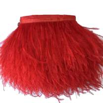 KOLIGHT Pack of 2 Yards Natural Dyed Ostrich Feathers Trim Fringe 4~5inch for DIY Dress Sewing Crafts Costumes Decoration (Red)