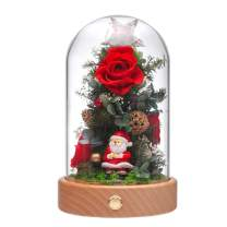 ANLUNOB Preserved Real Rose Eternal Rose in Glass Dome Gift Romantic Rose LED Light Wooden Base for Christmas