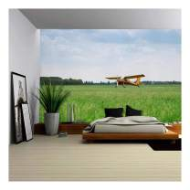wall26 Little Yellow Airplane on Green Grass Field - Removable Wall Mural | Self-Adhesive Large Wallpaper - 66x96 inches