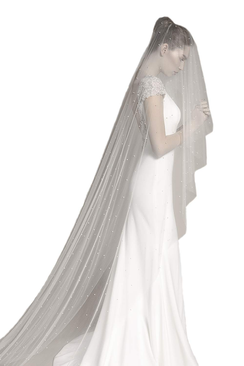 Passat 1 Tier cathedral veil beautiful Ambrosia veil features a floral lace wedding veils with rhinestones beads H18