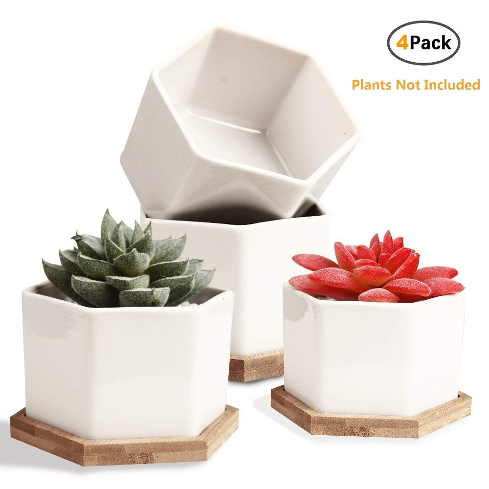 Succulent Pots, OAMCEG 4 Inch Succulent Planters, Set of 4 White Ceramic Succulent Cactus Plant Pots with Bamboo Tray(Plants NOT Included)