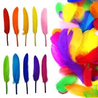 Colorful Feathers and Goose Feathers 200 Pcs 3.9-5.9 Inch for Craft Dream Catchers Wedding Home Party Decorations (10 Colors)