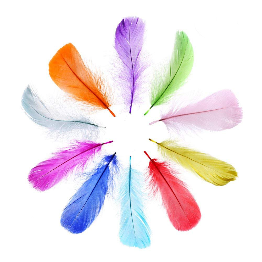 DECORA 300 Pieces Colorful Nature Feathers for DIY Craft Wedding Jewelry Clothing Home Party Decoration,10 Colors