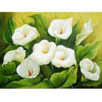 LZZTU DIY 5D Diamond Painting Kit for Adult Kids, Full Drill Embroidery Cross Stitch Picture Arts Craft, Beautiful Flowers Scenery for Living Room Home Wall Decor, Calla Lily, 19.7x23.6''