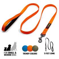 Otis & Claude Nylon Dog Leash - Durable, Padded Handle, Smooth Metal Swivel - Small, Medium, Large