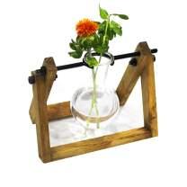 Banord Desktop Plant Terrarium Glass Planter Bulb Vase with Retro Solid Wooden Stand for Hydroponics Plants Home Garden Wedding, 1 Bulb Vase