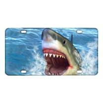 Amzbeauty 3D Shark Car License Plate Cover Novelty Custom Auto Tag Automotive License Plate Covers Vehicle Decorative Gift for Men Women Girls Boys