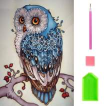 Diamond Painting Kits for Adult & Kids, Owl 5D Diamond Painting Round Rhinestone Embroidery Paint by Number Kits On Canvas Arts Craft for Wall Decor, 11.8X15.7 inch
