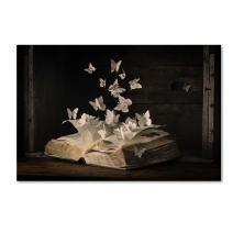 Lepidopterology by Heather Bonadio, 12x19-Inch Canvas Wall Art