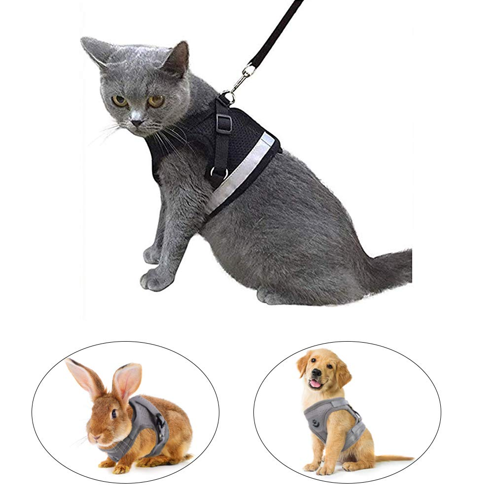 Kamots Beauty Escape Proof Cat Harness and Leash for Walking Adjustable Soft Mesh Pet Vest with Lead for Kitten Puppy Rabbit