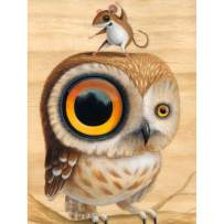 Diamond Art, 5d Full Drill Diamond Painting Kits for Adults, DIY Paint with Diamonds (owl Mouse)
