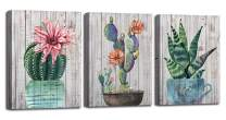 "Canvas Wall Art Prints Watercolor Ball Cactus Cacti Green Plants and Flower Painting Vintage Wood Background Pictures, Succulent Poster Artwork 12""x16"" 3 Panels/Set for Bedroom Bathroom Spa Salon Kitchen Home Office Decor"