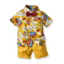 Qin.Orianna Toddler Baby Boys 2Pcs Short Sleeve Floral Hawaiian Luau Aloha Shirt Outfit Clothes Shorts Set