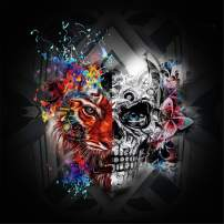 Maysurban 5D DIY Painting by Numbers Embroidery Painting Full Drill Diamond Painting Skulls Kits Adults for Home Wall Decoration (Halloween Skull 11.8x11.8 inch)