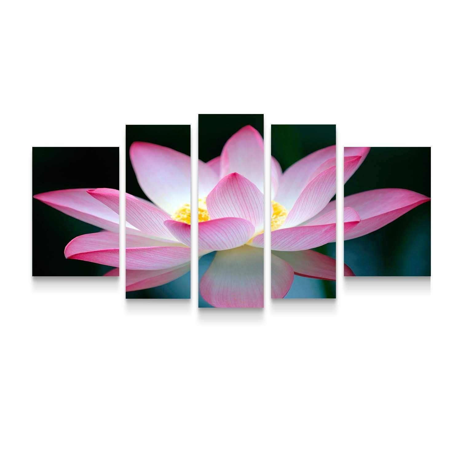 Startonight Canvas Wall Art Pink Flower - Pink Framed Set of 5 Large 36 x 71 Inches