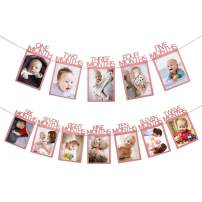 HAIOPS Photo Banner One Month to 12 Months for Baby First Birthday, Anniversary Celebration, Marriage Proposal Photograph Garland Party Decoration (Rose Gold)