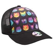 flySpacs Men Funny Cat Dad Hat for Running Sport Fishing