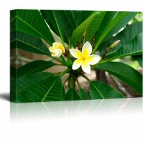 """wall26 - Canvas Prints Wall Art - Blooming Petunia in Tropical Green Setting   Modern Wall Decor/Home Decoration Stretched Gallery Canvas Wrap Giclee Print. Ready to Hang - 24"""" x 36"""""""