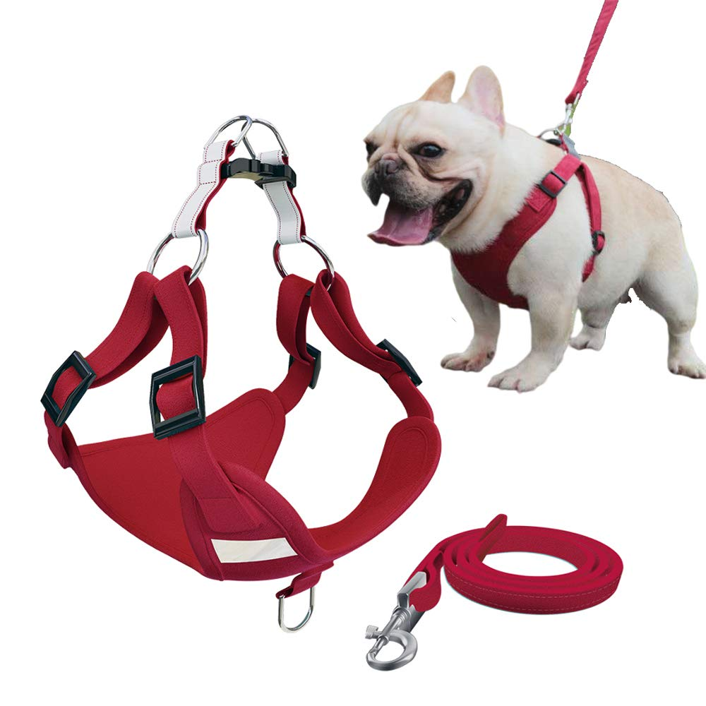 Xqpetlihai Step-in Air Dog Harness Reflective Dog Vest Harness with Leash Breathable and Adjustable Soft Padded Dog Vest with Easy Control Handle for Small to Large Dogs(Red L)