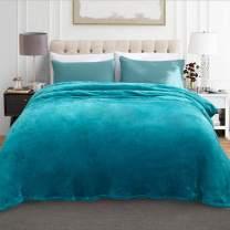 "JML Fleece Blanket, Plush Blankets Queen Size(90""x90"") - Anti-Static, Super Soft Warm, Lightweight Cozy All Season Use Flannel Bed Blanket, Turquoise"
