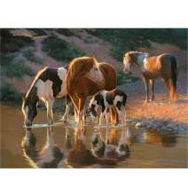 5D Diamond Painting Kits for Adults, Kids. Home Decoration, Room, Office, Gift for Her Him Horse Drinking Water by The River 15.7x11.8in 1 Pack by Witfox