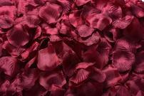 ocharzy 1000pcs Silk Rose Petals Wedding Flower Decoration (Dark Red)
