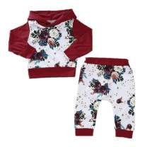 WINZIK 2Pcs Baby Girls Hooded Clothing Outfit Set Floral Dinosaur Sweatshirt Tracksuit Tops with Pants for 3-24M