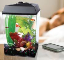 Koller Products AquaTunes 2.5-Gallon Aquarium - Power Filter - LED Lighting with 7 Dazzling Colors - Sleep Sound Machine with Soothing Nature Sounds - MP3 Player and Speakers