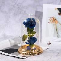 Beauty and The Beast Rose , Blue Rose Kit, Silk Rose and Led Light with Fallen Petals in Glass Dome on Copper Plating Base Forever Rose Gift for Mother's Day Valentine's Day Anniversary Birthday …
