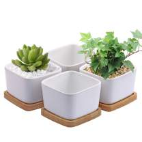 Succulent Pots,OAMCEG 3.54 inch Square Design for Succulent/Cactus,Set of 4 White Ceramic Succulent Cactus Planter Pots with Bamboo Tray(Plants NOT Included)