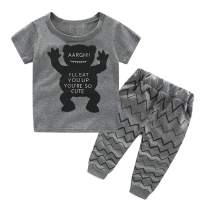 Summer Baby Boy Clothes Newborn Boys Outfits Long Sleeve Tops and Pants Infant Clothing Sets